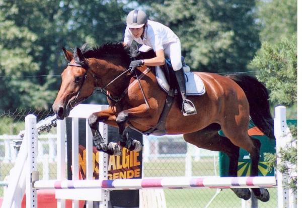 Comprar caballo queen du moulin silla franc s salto bayo en venta - Caballo silla frances ...